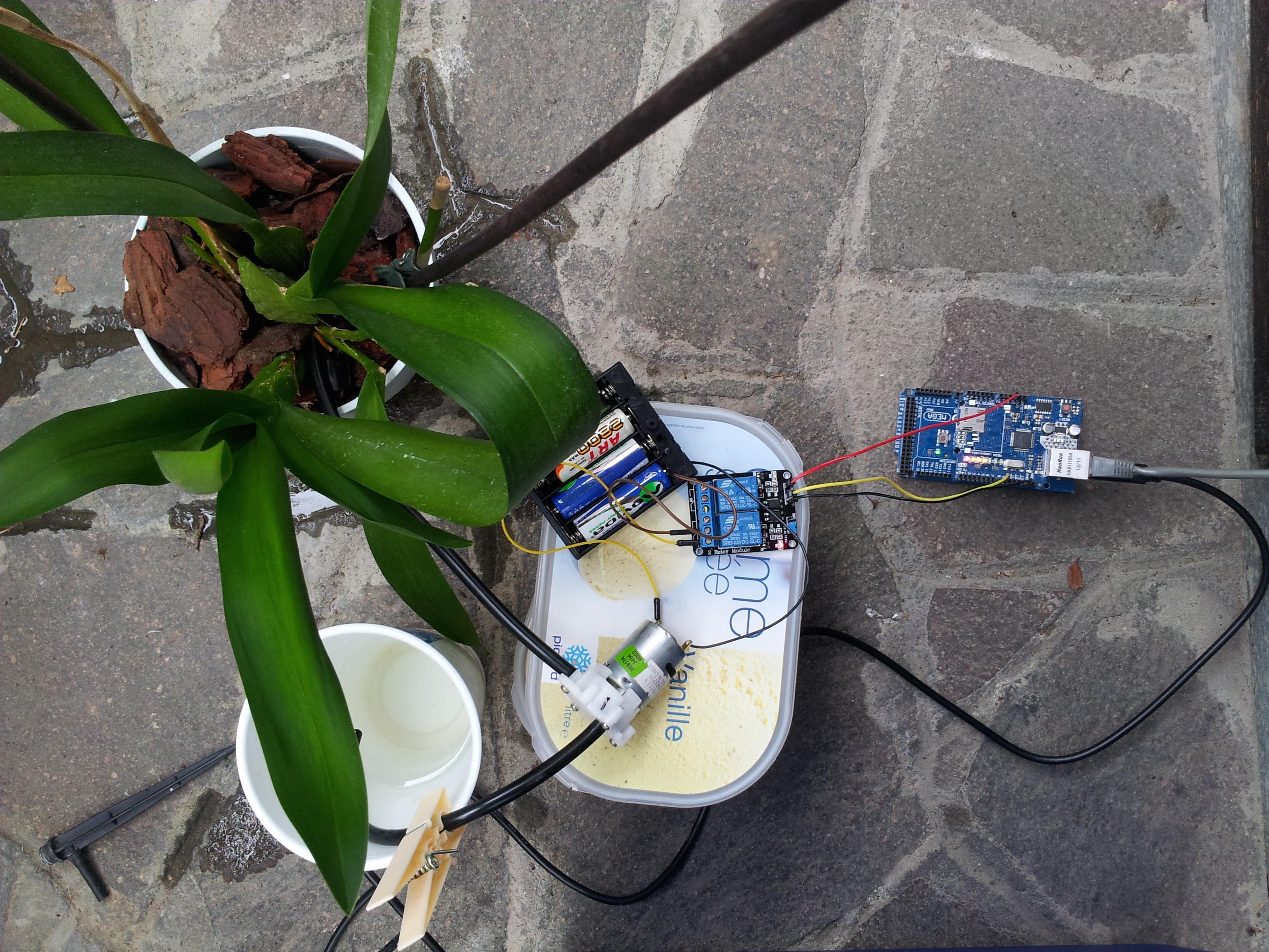 Sistema di irrigazione, per bagnare una pianta da remoto con Arduino
